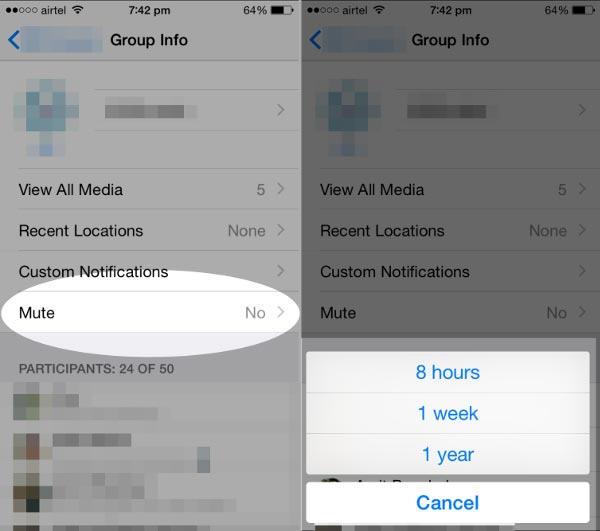 Cara Mute Atau Nonaktifkan Notifikasi Grup Whatsapp Di Iphone 2