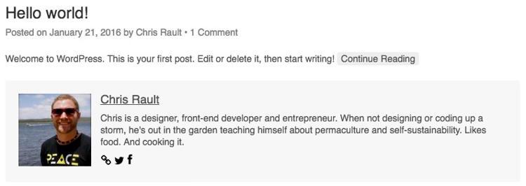 Cara Menambahkan Author Box Di WordPress Posts 8