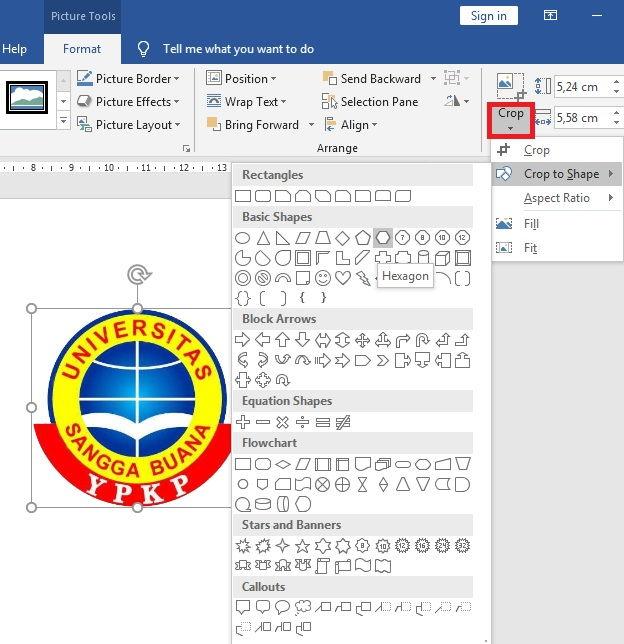 Panduan Formatting Picture Di Microsoft Word 4